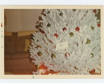 Vintage Snapshot Photo: Christmas Tree, 1971 (74566)