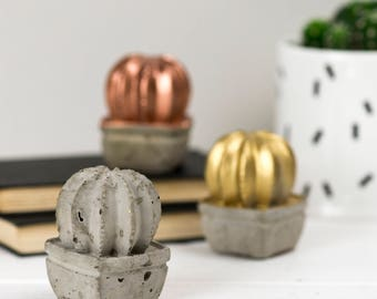 Cactus Gift – Cactus Ornament – Concrete gift - Gift for Him - Desk Accessories - Housewarming gift - Secret Santa - Gift for Women
