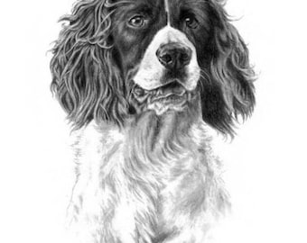 Custom Pet Portrait Dog Portrait Dog Sketch 5x7