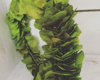 Green Hydrangea crown