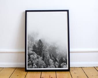 Pine Trees Poster. Black and White Scandinavian Print. Minimalist Trees Misty Fog Prints. Instant Download Nature Landscape Digital Poster.