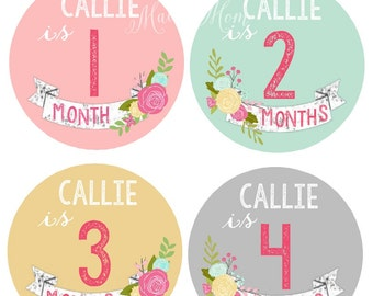 FREE GIFT,  Baby Girl Personalized  Monthly Stickers,  Month Stickers Baby Girl, Floral Roses,  Milestone Stickers, Bodysuit Nursery Decor
