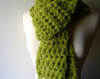 Porch Swing Scarf in Apple Green Lime Thick Chunky Fringe Wrap