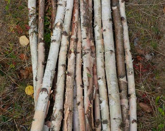 Birch Stick Bundles,White Birch,Arrangement,Natural Wood,Wedding,Home,Holiday,Christmas,Rustic,Wood Decor,Birch Logs,Firewood Decor