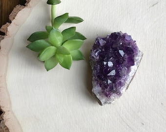 Uruguay Amethyst Geode - Small Power Crystal - Home Altar - Bohemian Hippie Decor - Purple Amethyst Mineral Rock Specimen - Crystal Cluster