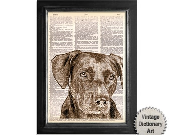 Chocolate Lab Dog Art - Printed on Vintage Dictionary Paper - 8x10.5 -