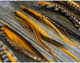 Feather Extensions #Orange # #MINI #