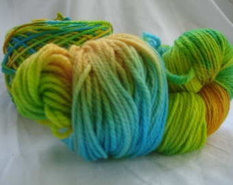 Caribbean Vacation Hand Painted Worsted Wool Yarn