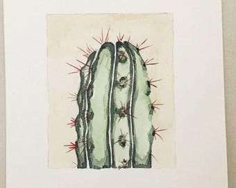 Cactus Watercolor Original sheet from the collection BOTANICAS decor