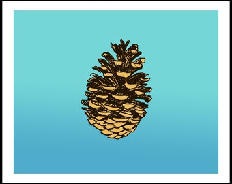 Falling Pinecone 8 x 10 giclee print by David Lasky