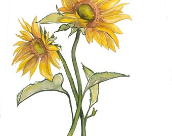 Sunflowers, sunflower painting, watercolor sunflowers, yellow flower watercolor, watercolor sunflower print