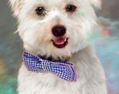 Custom Maltese Dog Pet Portrait