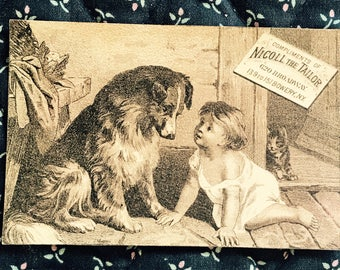 Victorian Trade Card 1800s, Big Dog With Cute Baby, Nicoll The Tailor, Wonderful Antique Collectible