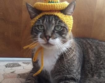 Sombrero Cat Hat, knit hat for cat, cat costume, halloween