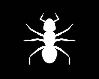 Ant Decal,Insect Decals,Bug stickers,Insect Stickers,Black Ant Decal