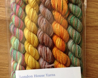 Autumn mini skeins x 5