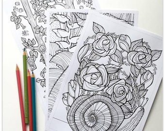 Printable 3 page Colouring Booklet: Quirky Botanicals 1