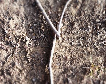 LETTER Y Natural Outdoor Nature Rocks Photography Fine Art Print Scott D Van Osdol Sticks Twigs Ground Dirt Spelling Initials Name Family