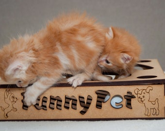 Cat Toys, Puzzle for a cat, Brainteaser, Cat love Teaser, Cat lover gift, Cat Teaser Toy, Unique Cat Toy, Pets Gift, Favorite Pet Toy