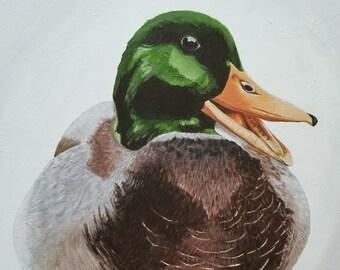 Mallard Duck Original Acrylic Painting
