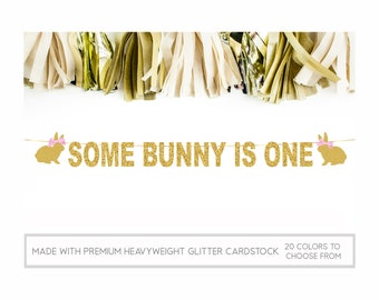 Some Bunny Is One Banner, Bunny 1st Birthday Banner, Bunny Banner, Some Bunny Is One Birthday Decorations, 1st Birthday