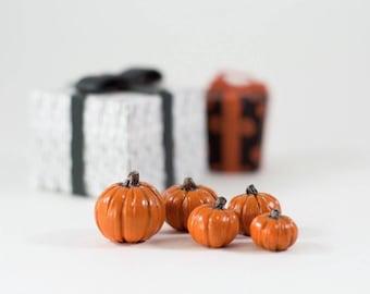 Miniature Pumpkins, Halloween, Fall