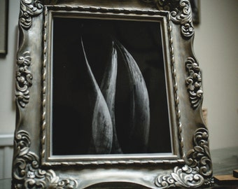 """Wunderkammer I 