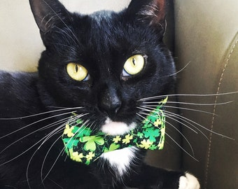 Get Lucky Shamrock Print Bow Tie For Cats - St Patrick's Day Bow Tie Cat Collar