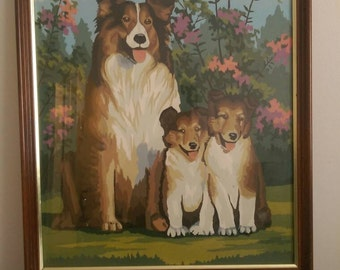 "Vintage Paint by Numbers Collie Family.  Framed 21.5"" x 17.5""."