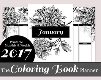 The Coloring Book Planner, Adult Coloring DIY printable organizer, Letter size 2017