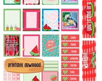 Watermelon Summer/ Instant Digital Download/ EC Vertical Planner/ Picnic stickers/ Cold Watermelon/ Sweet/ Summer Fruit/ Summer Stickers/
