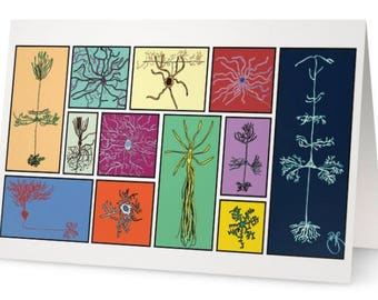 Neurons and Glia of the Brain (set of 5)