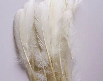 "White Goose Feathers, 100 Loose Feathers / 6""-7""long"