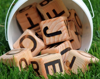 Pic-a-Word - Letter Yard Dice Game