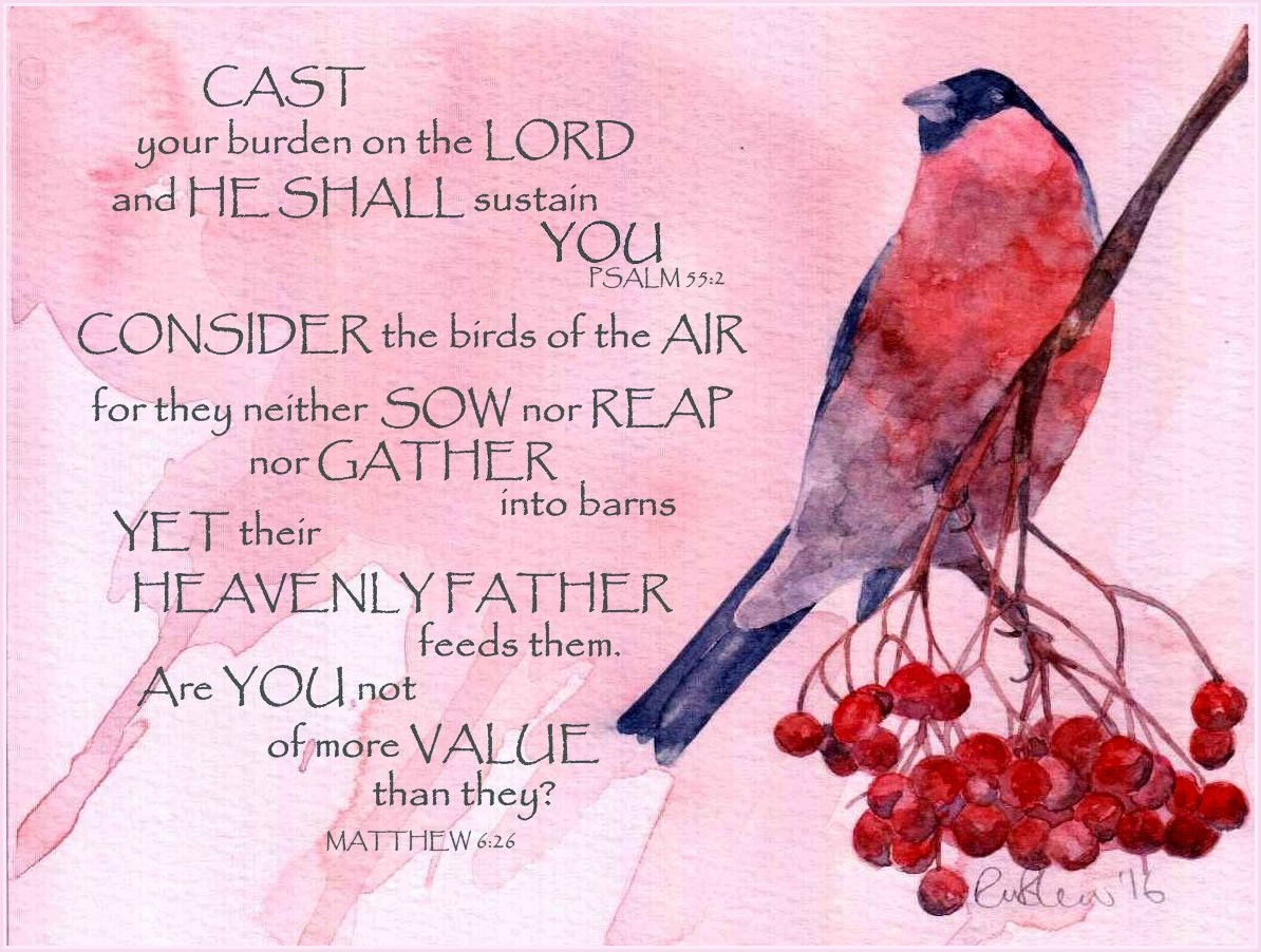 BULLFINCH bible verse scripture mounted watercolour print by