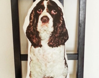 Pet Memory Pillow, Personalized Pet Photo Pillow, Large Custom Dog Pillow, Pet Loss, Memorial Pillow, Pet Tribute Gift, Pet Loss, Pet Love