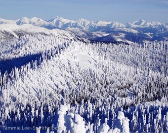 Whitefish Mountain Resort, Big Mountain, Montana Snow Ghosts, Rocky mountain Winter Landscape, Photograph or Greeting card