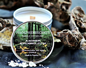 Amber Phossilium Scented Soy Wax Wood Wick 6.5 oz. Candle Tin