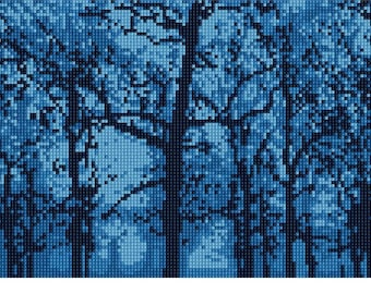 Needlepoint Kit or Canvas: First Light