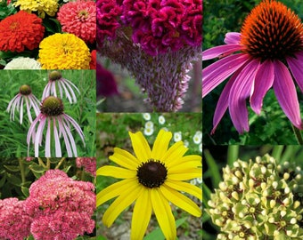 Pollinator Mix