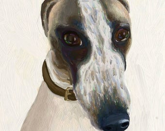 Dog 37: Jura the whippet - Prints or Greeting Cards