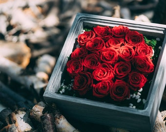 Hand-made Eco-Friendly Preserved Rose Arrangements