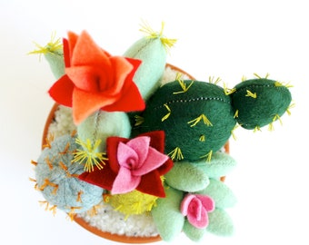Handmade felt cactus & succulent garden - Home decor, Cactus lover gift, Mother's Day Gift, New Home Gift, Quirky office decor, Gardeners