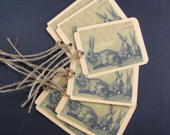 Lapin Domestic or the Domestic Rabbit Tags