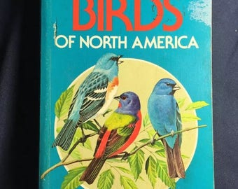 Golden - Birds Of North America Vintage Softcover Reference Book From 1983