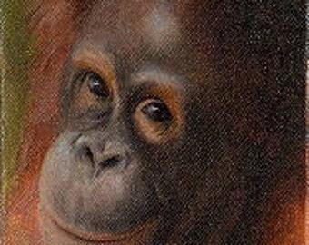 Orangutan cinta 2 - Original artwork artist Pamela Tippett