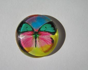 Glass cabochon round 25 mm with butterfly image original colorful whimsy