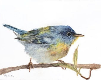 Northern Parula warbler bird Fine  Art Giclee Archival Prints from original artwork by artist Joy Neasley
