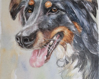 Watercolors animal portraits to order.