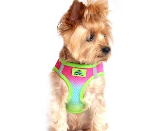American River Choke-Free Dog Harness - Rainbow Ombre   60951